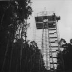 Torre De Alta Tension, Viveiro